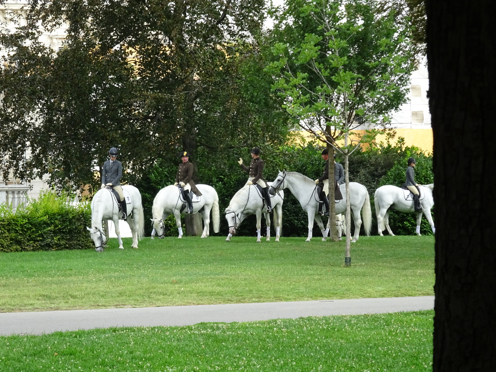 People on horses in the park